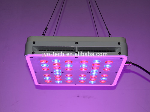 Super Power 200w Led Grow Light With Full Spectrum