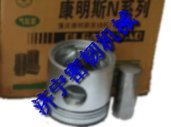 Supply Ccec Cummins Pin Piston 191970 10