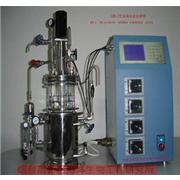 The Bioreactor Microalgal Bioreactors Light Biological Reaction Equipment