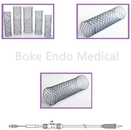Trachea Bronchus Stent Self Expendable