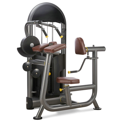Triceps Extension Fitness Equipment Gym