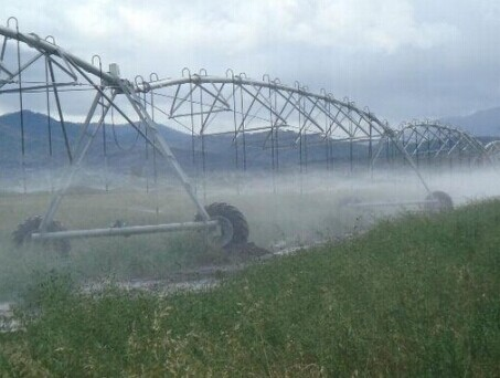 Turn Key Project Movable Center Pivot Irrigation System Plant In China