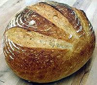 Unica Bul Bread Leaven