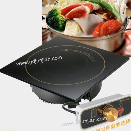 Universal Induction Cooker
