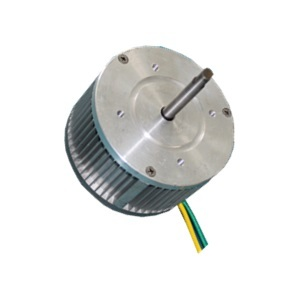W120100 Brushless Motors For Power Tools Automation And Blowers