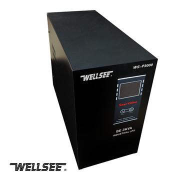 Ws P Series Solar Inverter Intelligent Operation Sine