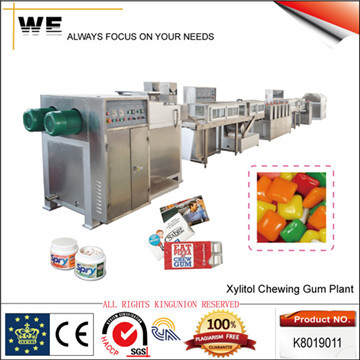Xylitol Chewing Gum Plant