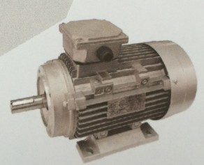 Y2 Series Three Phase Induction Motor Aluminum Die Cast Housing