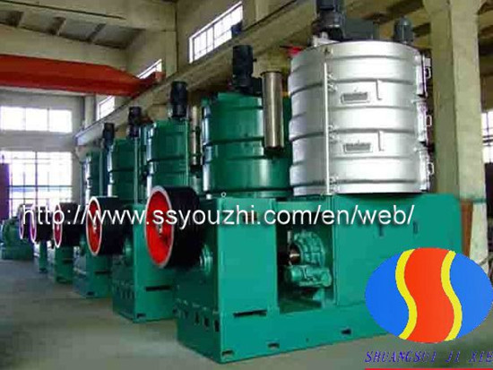 Yzy 340 Rapeseed Oil Press Machine