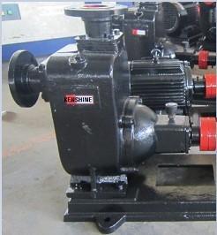 Zw Series Self Priming Sewage Pump